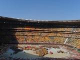 Mundial Sudafrica 2010 3